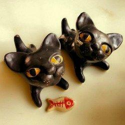 แมวดำตัวน้อย